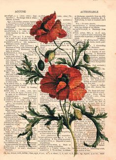 Vintage Dictionary art red flower. $8.00, via Etsy.