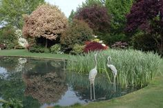 Large Garden Ponds Make your landscape interesting with the use of a water feature