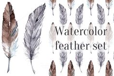 Watercolor vector feather set by Art By Silmairel on Creative Market
