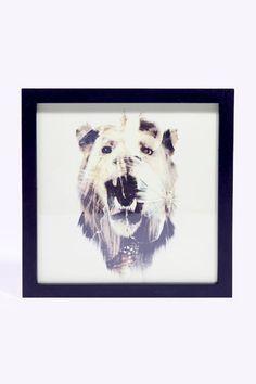 Dan Mountford - Lion - Toile encadrée