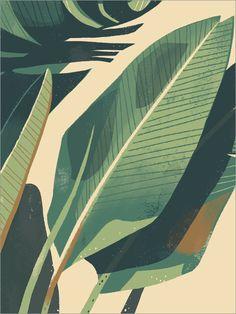 Palm Plant 1 Large Format, Chris Turnham