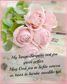 Happy Birthday Prayer, Birthday Wishes Quotes, Special Words, Condolences, Sympathy Cards, Funeral, Prayers, Flowers, Afrikaans