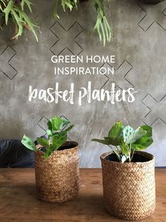 Bali Inspiration – Basket Planters