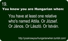 . My Heritage, Way Of Life, Hetalia, Family History, Hungary, Languages, Memes, Truths, Fun Stuff