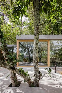 Cloaked House by Ernesto Pereira is designed to disappear into its arboreal setting | Glazed walls sandwiched between concrete slabs ensure this house in the Portuguese city of Marco de Canaveses blends in with the surrounding trees and provides extensive views across a nearby valley. | Photo © João Morgado