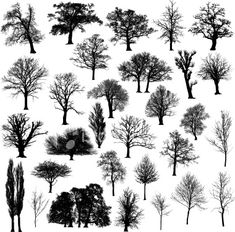 Winter tree silhouette collection Royalty Free Stock Vector Art Illustration