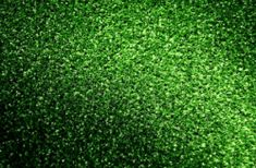 The artificial grass needs little maintenance. This is unlike the natural grass that we are accustomed to which need to be regularly trimmed or watered. Grass Alternative, Artificial Turf, Colorado Homes, Things To Know, Stepping Stones, Herbs, Outdoor Decor, Stair Risers, Herb