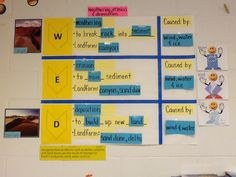 WED interactive word wall. TEK 5.7B
