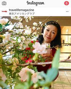 Cherry blossoms in Tokyo. www.travelifemagazine.com