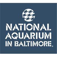Baltimore Aquarium: indoor fun for the whole family!