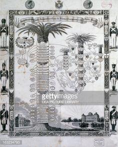 Stock Illustration : Family tree of House of Savoy-Carignano, engraving, Italy, 19th century