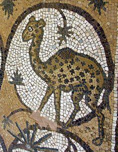 Petra: mosaico de la iglesia