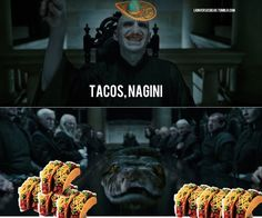 Even Voldemort brought taco
