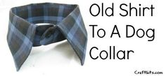 Recycled Dog Collar. Add a tie and he be stylin for downtown! ~K