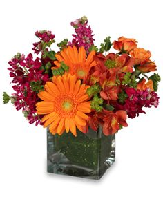 Image result for father's day flowers