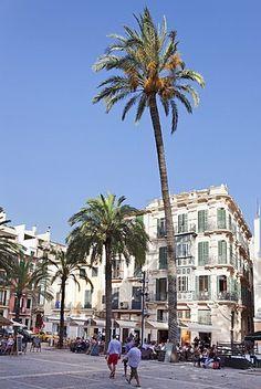 Restaurants and street cafes at der Placa de la Llotja, Palma de Mallorca, Majorca, Balearic Islands, Spain.