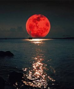 Singapore Photos, Sailing Cruises, Destinations, Sailing Holidays, Cold Brew Coffee Maker, Crafts For Seniors, Moon Photography, Red Moon, Beautiful Moon