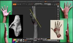 3DMotive - Sculpting Hand Anatomy in ZBrush Volume 1 | 6.6 GB Read more at https://ebookee.org/3DMotive-Sculpting-Hand-Anatomy-in-ZBrush-Volume-1_3200934.html#xxEYT0YGhxh212di.99
