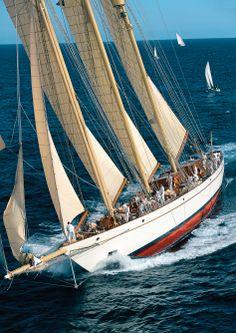 pinterest.com/fra411 #sailing - Franco Pace
