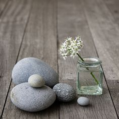 Creating a comfortable space for people to reveal their thoughts is so important in a therapy office...think about color, texture, scent, lighting, art, and natural objects like flowers, shells, leaves. Etc.  Mix things up depending on the season.  Therapy design ideas by Cynthia Wagenhauser, LISW.