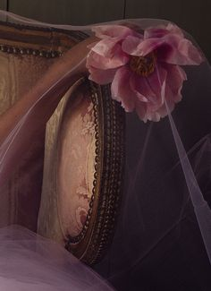 Afbeelding op Beauté historique - the Green Gallery Mauve, Rose Cottage, English Style, The Villain, Pink Brown, Pantone Color, Vintage Beauty, Dusty Rose, Aesthetic Pictures