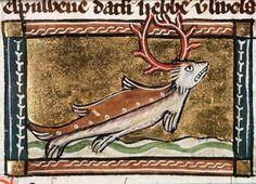 water stag  Jacob van Maerlant, Der Naturen Bloeme, Flanders ca. 1350  Den Haag, Koninklijke Bibliotheek, KA 16, fol. 103v