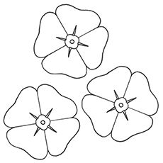 Top 47 Free Printable Flowers Coloring Pages Online In 2020 Poppy Coloring Page Poppy Template Veterans Day Coloring Page