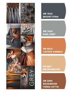 Instantly turn any picture into a palette with ColorSnap, created for you by Sherwin-Williams. Copper Paint Colors, Copper Colour Palette, Orange Paint Colors, Rust Color Paint, Rust Color Schemes, Color Schemes Colour Palettes, Living Room Color Schemes, Orange Color Palettes, Paint Schemes