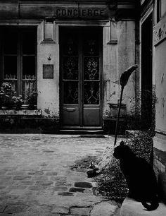 undr:  Janine Niepce Le Chat de la Concierge. 1957