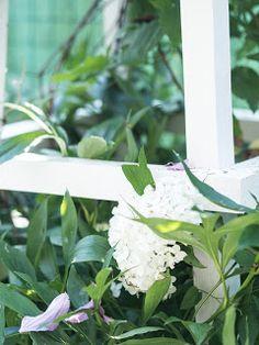 Prairie Charm French Farmhouse, Plant Leaves, Charmed, Gardening, Plants, Inspiration, Instagram, Summer, Blog