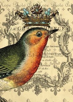 Le Fleur Crowned Bird 5x7 Collage  Image Transfer by HopePhotoArt, $2.98