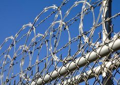 Barbed wire fence used with razor wire - chain link fence for high security fencing. Our barbed wire fence wire diameter is barb wire diameter Barbed Wire Art, Barbed Wire Fencing, Wire Fence, Concertina Wire, Barb Wire Crafts, Types Of Fences, Chain Link Fence, Fence Design, Prison