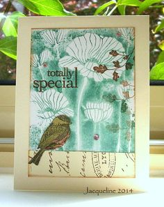 totally special | Flickr - Photo Sharing!