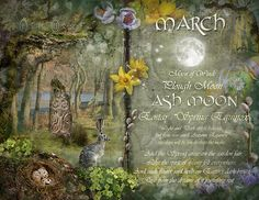 Book of Shadows Moon: March : Ash Moon by Angie Latham. It makes a lovely Moon page for a Book of Shadows. Tarot, Vernal Equinox, Moon Magic, Lunar Magic, Sabbats, Beltane, Book Of Shadows, Moon Child, Months In A Year