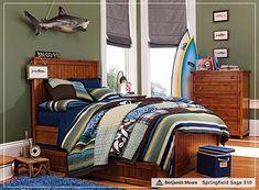 Green walls for blue, green, grey color scheme.   Classic Teenage Boys Interior Design Ideas