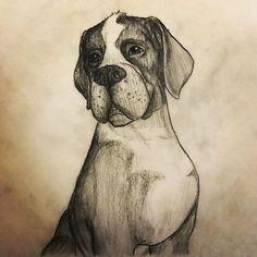 Old dog drawing #drawing #dog #illustration