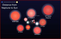Largest Stars discovered..VY Canis Majoris is the largest known star. If it were in our Solar System it would extend beyond Saturns orbit.