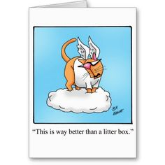 Funny Cat Angel Gift! Greeting Card