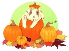 """""""Pumpkin Bunny"""" My Drawings, Childrens Books, Things That Bounce, Whimsical, Disney Characters, Fictional Characters, Bunny, Greeting Cards, Pumpkin"""