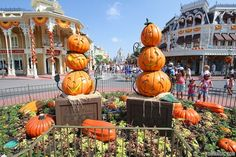 Magic Kingdom Halloween decorations 2013 - Photo 5 of 40