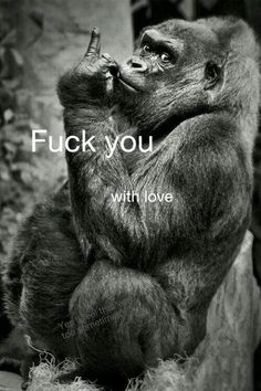 Fuck you with love