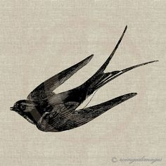 Flying Swallow. Image No.57, Digital Download Iron-On Transfer to Fabric (burlap, linen) Paper Prints (cards, tags). $1,00, via Etsy.