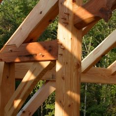 Several timber species are commonly used to build timber frames from both hardwood and softwood varieties, learn more about them in this indepth article.