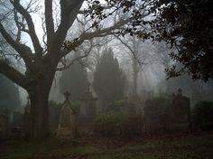 """Greenock Cemetery"", by Mark Old Cemeteries, Graveyards, Over The Garden Wall, Southern Gothic, Thing 1, After Life, Tumblr, Dark Places, Mists"
