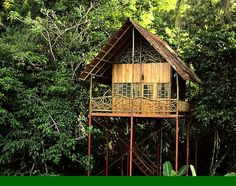 Rainforest Tree House w Hot Springs - Treehouses for Rent in Costa Rica