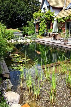 Beautifully Natural Pond Swimming Pool Design Ideas - Home and Garden Decoration Swimming Pool Pond, Natural Swimming Ponds, Natural Pond, Swimming Pool Designs, Natural Garden, Pond Landscaping, Ponds Backyard, Pond Design, Landscape Design