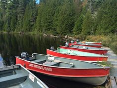 Can't go wrong with a Lake Herridge Lodge & Resort maintained boats. We have a licensed marine mechanic right on site!
