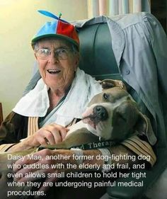 This is Daisy Mae ♥ this is an amazing story. People should take this into consideration! Stop dog fighting not the dog! #pitbull