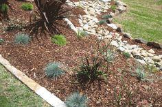 Landscape Gardener Designs, Plans and Construction. Online Garden design and garden plans. Design your own garden online, no software. Fescue Grass, Blue Fescue, Sydney, Australian Native Garden, Garden Online, Kangaroo Paw, Landscaping Work, Modern Landscape Design, Garden Inspiration