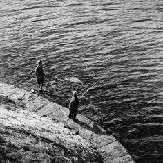 Lapset ongella Lauttasaaren sillan korvassa. - Finna -... Helsinki, Bald Eagle